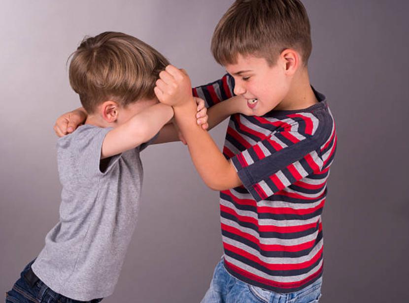 enfants dispute frères soeurs