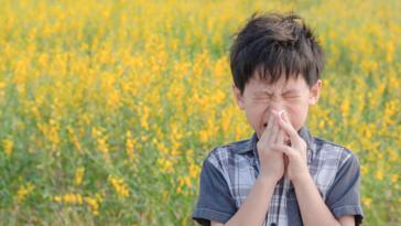 enfant mouchoir allergie au pollen malade pollen