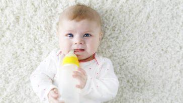 bébé nourrisson lait biberon nourrir manger lait de vache lait de chèvre