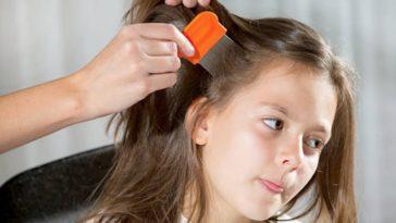poux cheveux enfant peigne