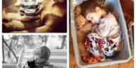 Collage enfants animaux de compagnie
