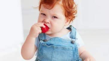 bébé manger DME diversification alimentaire menée par l'enfant alimentation