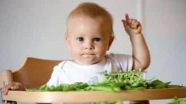 bébé alimentation repas diversification alimentaire