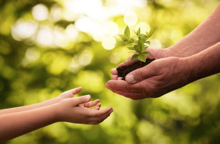 enfant écologie parents mains environnement protection végétation