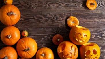 citrouille halloween décoration automne